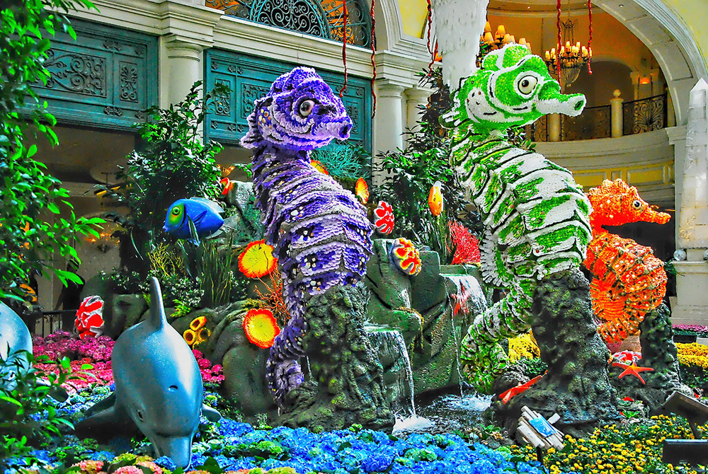 Bellagio Botanical Gardens Sea Horses